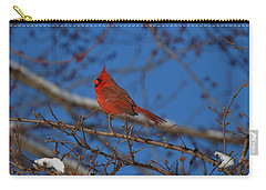 Cardinal Carry-all Pouch by Eric Liller