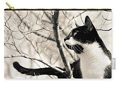 Cat In A Tree In Black And White Carry-all Pouch