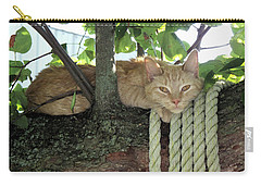 Carry-all Pouch featuring the photograph Catnap Time by Thomas Woolworth