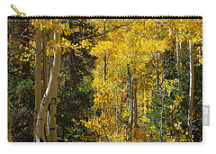 Carry-all Pouch featuring the photograph Changing Seasons by Vicki Pelham