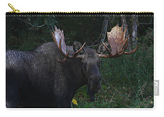 Carry-all Pouch featuring the photograph Checking You Out by Doug Lloyd