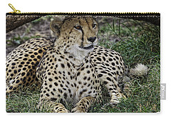 Cheetah Alert Carry-all Pouch