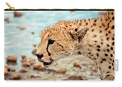 Cheetah Headshot Carry-all Pouch by Darcy Michaelchuk