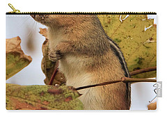 Chipmunk Carry-all Pouch by Doris Potter