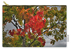 Carry-all Pouch featuring the photograph Cold Autumn Breeze  by Michael Frank Jr