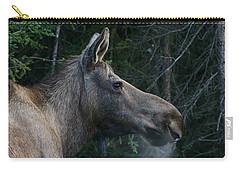 Carry-all Pouch featuring the photograph Cold Morning by Doug Lloyd