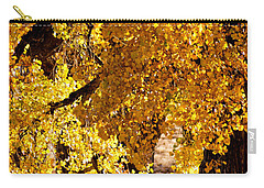 Carry-all Pouch featuring the photograph Colorado Gold by Colleen Coccia