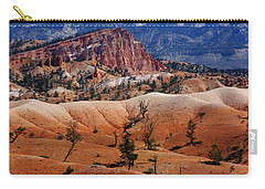 Colors Of The Rainbow Carry-all Pouch by Vicki Pelham