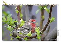 Carry-all Pouch featuring the photograph Content by Nava Thompson