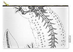 Cryptobranchus, Living Fossil Carry-all Pouch by Science Source