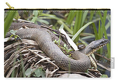 Carry-all Pouch featuring the photograph Cuddling Snakes by Jeannette Hunt