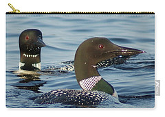 Curious Loons Carry-all Pouch by Steven Clipperton