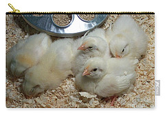 Cute And Fuzzy Chicks Carry-all Pouch by Chalet Roome-Rigdon