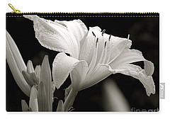 Daylily Study In Bw Iv Carry-all Pouch by Sue Stefanowicz