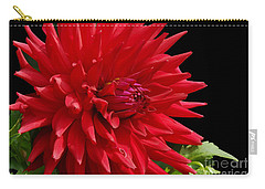 Decked Out Dahlia Carry-all Pouch