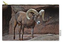Desert Bighorn Sheep Ram I Carry-all Pouch