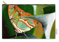Carry-all Pouch featuring the photograph Dido Longwing Butterfly by Peggy Franz
