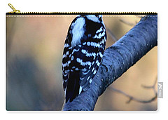 Carry-all Pouch featuring the photograph Downy Woodpecker by Elizabeth Winter