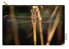 Carry-all Pouch featuring the photograph Dragon Fly 1 by Pedro Cardona
