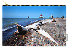 Driftwood At Erie Carry-all Pouch