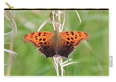 Carry-all Pouch featuring the photograph Eastern Comma Butterfly by Penny Meyers