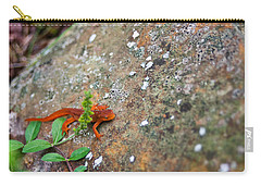 Eastern Newt Juvenile 8 Carry-all Pouch