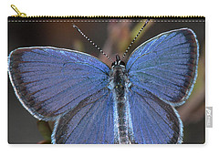 Eastern Tailed Blue Butterfly Carry-all Pouch