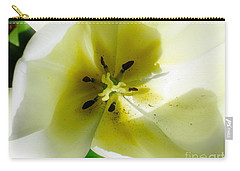 Carry-all Pouch featuring the photograph Ethereal by Rory Sagner