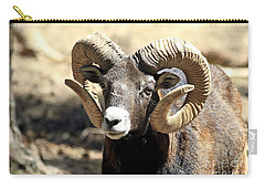 European Big Horn - Mouflon Ram Carry-all Pouch