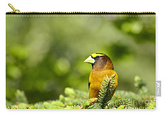 Evening Grosbeak Carry-all Pouch