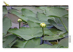 Everglade Beauty Carry-all Pouch