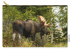 Fall Bull Moose Carry-all Pouch