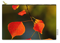Carry-all Pouch featuring the photograph Fall Color 2 by Dan Wells