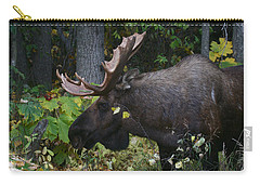 Carry-all Pouch featuring the photograph Fall Master by Doug Lloyd