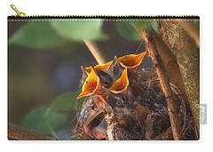 Feeding Time Carry-all Pouch by Joann Vitali