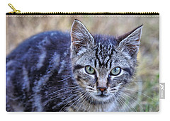 Feral Kitten Carry-all Pouch