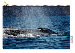 Carry-all Pouch featuring the photograph Fin Whale Spouting by Don Schwartz