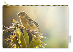 Finch Aglow Carry-all Pouch by Cheryl Baxter