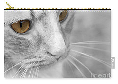 Carry-all Pouch featuring the photograph Flitwick The Cat by Jeannette Hunt