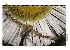 Carry-all Pouch featuring the photograph Flower Spider On Fleabane by Daniel Reed