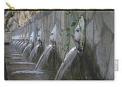 Carry-all Pouch featuring the photograph Fountain by David Gleeson