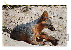 Carry-all Pouch featuring the photograph Foxie by Debra Forand