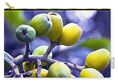 Sicilian Fruits Carry-all Pouch