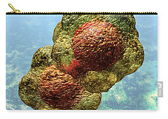Geminivirus Particle Carry-all Pouch