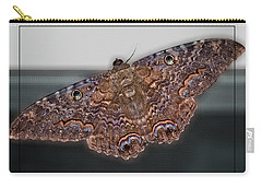 Carry-all Pouch featuring the photograph Giant Moth by DigiArt Diaries by Vicky B Fuller