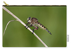 Carry-all Pouch featuring the photograph Giant Robber Fly - Promachus Hinei by Daniel Reed