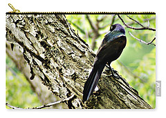 Grackle 1 Carry-all Pouch by Joe Faherty