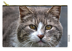 Gray Tabby Tux Cat Carry-all Pouch by Chriss Pagani