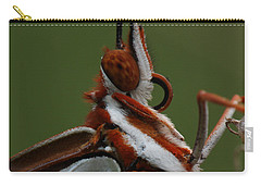 Carry-all Pouch featuring the photograph Gulf Fritillary Butterfly Portrait by Daniel Reed