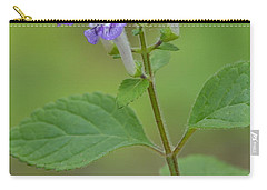Carry-all Pouch featuring the photograph Hairy Skullcap by JD Grimes